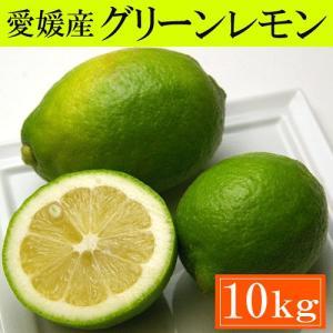 訳あり・愛媛産グリーンレモン10kg「安心・安全がうれしい国産レモン!」送料込|bishokuc