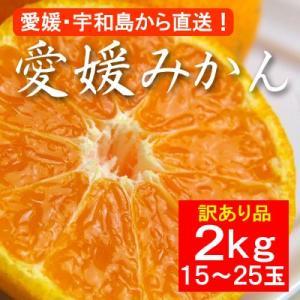 お歳暮 ギフトにも 不揃い 訳あり・愛媛産みかん 2kg(約15〜25玉)|bishokuc