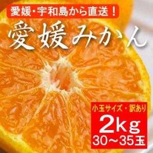 お歳暮 ギフトにも 訳あり・小粒バージョン・愛媛産みかん2kg(約30〜35玉)|bishokuc