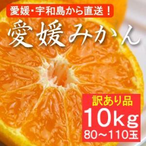 不揃い 訳あり・愛媛産みかん 10kg(約80〜110玉)|bishokuc