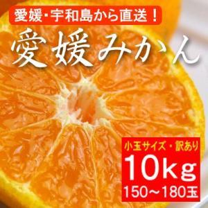訳あり・小粒バージョン・愛媛産みかん10kg(約150〜180玉)|bishokuc