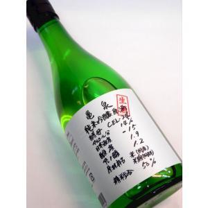 亀泉 CEL-24 純米吟醸生原酒 平成二十五酒造年度 720ml 日本酒 薫酒 高知県、亀泉酒造(株)|bishunomikawaya