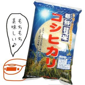 愛知コシヒカリ 5kg|のだや 愛知県産 コシヒカリ お米 ...