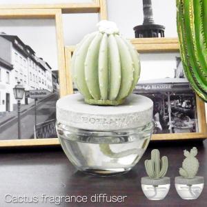 カクタス フレグランスディフューザー ダルトン Cactus Fragrance Diffuser Dulton あすつく bit