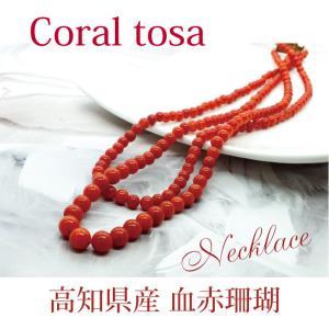 土佐珊瑚 高知県産血赤サンゴ 2連ネックレス長さ41cm 金具18K採用。高知県珊瑚共同組合公式認定...