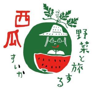 小玉スイカ2個 完熟 農薬・化学肥料不使用 野菜と旅する(東近江市)のスイカ 約6kg(3kg×2個)前後 biwacoi
