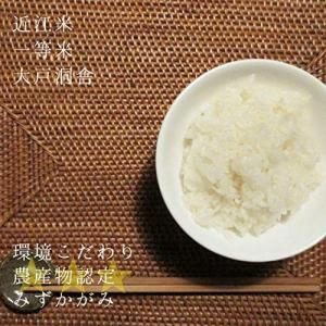 【新米予約】2021年度 米 お米 5kg みずかがみ 滋賀県産 白米 玄米 大戸洞舎 送料無料 滋賀県ご当地モール biwaoumi