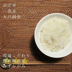 【新米予約】2021年度 米 お米 10kg みずかがみ 滋賀県産 白米 玄米 大戸洞舎 送料無料 滋賀県ご当地モール biwaoumi