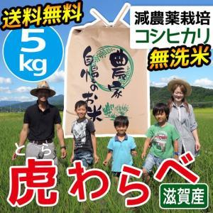 2020年度 米 お米 5kg コシヒカリ 虎わらべ 滋賀県産 白米 玄米 ファーム虎姫 送料無料 滋賀の幸|biwaoumi