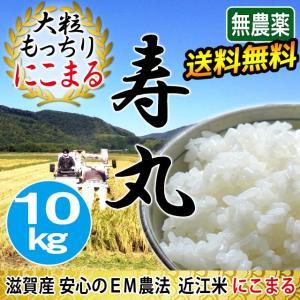 【すくすく成長キャンペーン5%OFF】 令和2年産 2020年産 米 お米 にこまる 寿丸 10kg 無農薬 吉田農園 滋賀産 白米 玄米 送料無料 biwaoumi