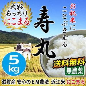 【すくすく成長キャンペーン5%OFF】 令和2年産 2020年産 米 お米 にこまる 寿丸 5kg 無農薬 吉田農園 滋賀産 白米 玄米 送料無料 biwaoumi