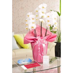 ●お祝い用 お祝いギフト、お悔やみギフトの専門店SP Gift's(エスピーギフト)では、誕生日祝い...