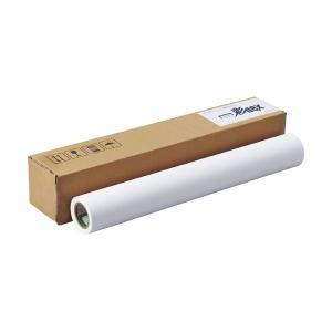 セーレン 商店 超美品再入荷品質至上 彩dex 高発色耐久クロス610mm×20m 1本 HS010C 300-24