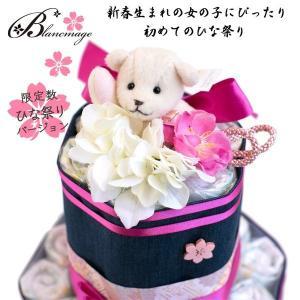 出産祝い おむつケーキ オムツケーキ 10周年記...の商品画像
