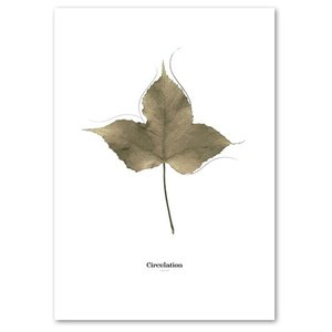 ポスター A2サイズ 『Circulation-b』 インテリア フォト 花,植物 おしゃれポスター Interior Art Poster|blankwall