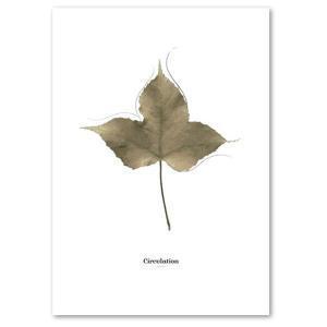 ポスター A3サイズ 『Circulation-b』 インテリア フォト 花,植物 おしゃれポスター Interior Art Poster|blankwall