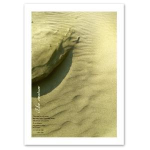 ポスター A2サイズ 『Creature』 海 砂浜 自然ポスター Interior Art Poster|blankwall