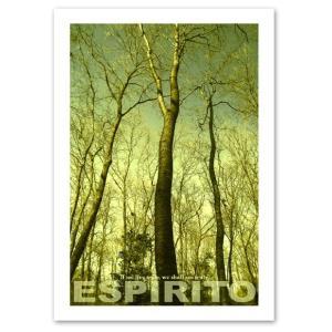 ポスター A2サイズ 『Espirito-w』 インテリア 風景 森 ポスター Interior Art Poster|blankwall