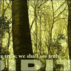 ポスター A2サイズ 『Espirito-w』 インテリア 風景 森 ポスター Interior Art Poster|blankwall|02