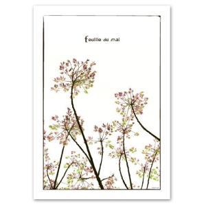 ポスター A3サイズ 『Feuille』 インテリア フォト 花,植物ポスター Interior Art Poster|blankwall