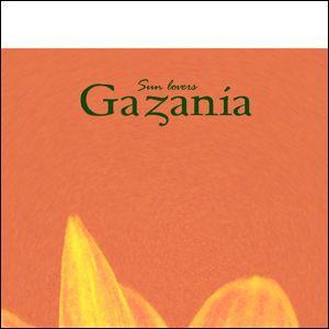 ポスター A3サイズ 『Gazania』 インテリア/フォト/花,植物 おしゃれポスター/Interior Art Poster|blankwall|03