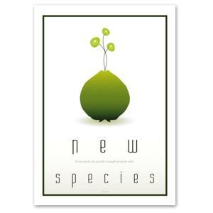 ポスター A2サイズ 『New Species』 アート/物体 ポスター/ Interior Art Poster blankwall