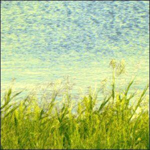 ポスター A2サイズ 『Normes』 インテリア フォト 風景,景色 おしゃれ ポスター  Interior Art Poster|blankwall|03