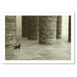 シルエットキャット 『Pilastri』 ポスター A2サイズ ネコ ねこ 猫 フォト 黒猫 インテリア アート blankwall