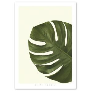 ポスター A2サイズ 『Something-mo』 インテリア フォト 花,植物 おしゃれポスター Interior Art Poster blankwall