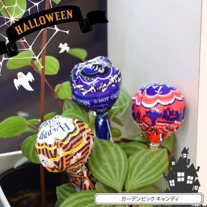ガーデンピック キャンディ ハロウィン|blaze-japan