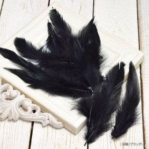 羽根 ブラック BLAZE パーツ 黒 フェザー|blaze-japan