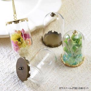 ガラスドーム 円柱 台座 セット|blaze-japan