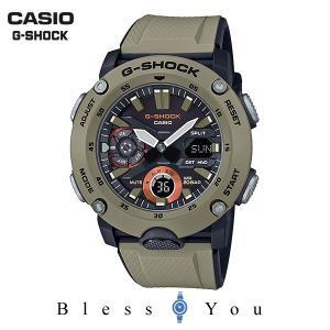 メンズ腕時計 カシオ 腕時計 メンズ Gショック 2019年4月 カーボンコアガード GA-2000-5AJF 16000|blessyou