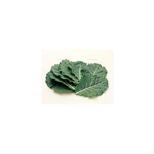 【フルヤの有機野菜】有機ケール 若葉 2枚 冷蔵|blife