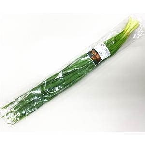 【フルヤの安心野菜】【冷蔵】有機 ニラ 100g