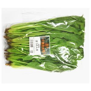 【フルヤの有機野菜】 有機ほうれん草 150g 冷蔵|blife