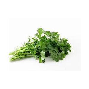 【フルヤの有機野菜】有機パクチー 30g 冷蔵|blife