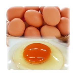 八ヶ岳農場麓卵(放し飼い)もみじ 6個セット blife