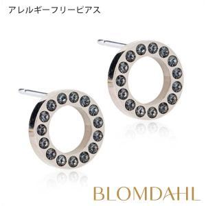 ピアス アレルギー対応 純チタン ブリリアンスパック フォロー ブラックダイヤモンド 10mm レディース 15-12191-12|blomdahljapan