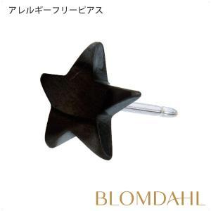 ピアス アレルギー対応 純チタン ブラック スター 8mm レディース 15-1522-00 blomdahljapan