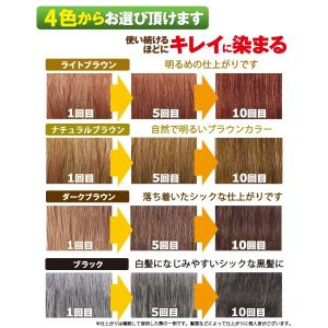 利尻ヘアカラートリートメント&利尻カラーシャンプーセット 無添加 ヘアカラートリートメントで白髪染め!シャンプーで白髪染め!併用してもっと効果的に!|blondie-blond|02