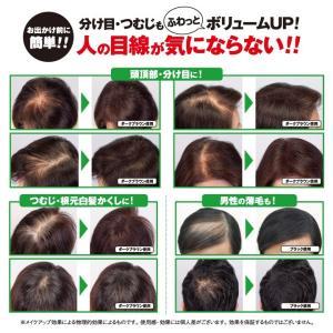 利尻ボリュームヘアパウダー&利尻フィットスプレーセット 髪が増えたみたいに薄毛カバー&ボリューム感アップ|blondie-blond|03