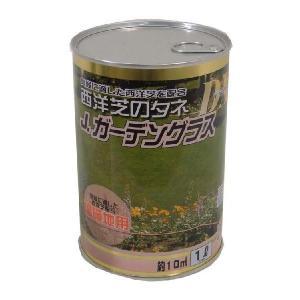 【期間限定セール】JガーデングラスDX 温暖地用(西洋芝の種)|bloom-s