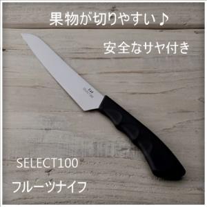 セレクト100 フルーツナイフ 果物ナイフ ペティナイフ 包丁 貝印 KAI DH3014 両刃