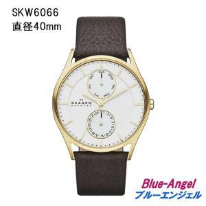 SKAGEN スカーゲン SKW 腕時計 ウォッチ skagen 233XLTMN 233XLTTM 233XLTTN SKW456LRS SKW456SSS SKW355SSGS SKW6086 SKW1069|blue-angel|12