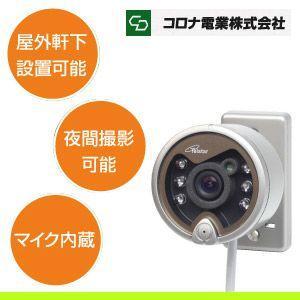 コロナ電業 赤外線投光器内蔵 軒下用カラーCCDカメラ TR-204C|blue-century