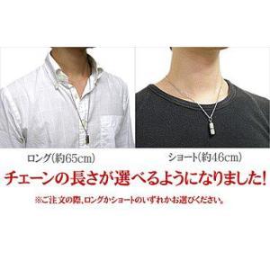 ステンレス ネックレス メディカルカプセルネックレス メンズ レディース ピルケースペンダント|blue-ribbon|04