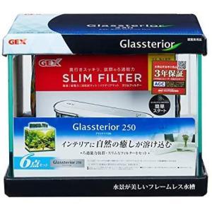 ジェックス グラステリア250 6点セット フィルター付 (無し 1セット(x 1))|bluebird-shoji