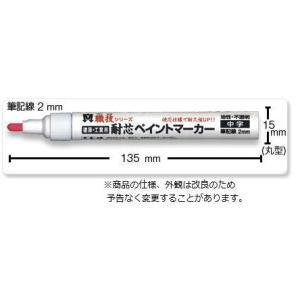 耐芯ペイントマーカー中字 1本  祥碩堂  【620】