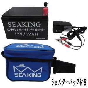釣り バッテリー ウッドマン シーキングバッテリー DC12V 12AH 【510】|bluepeter